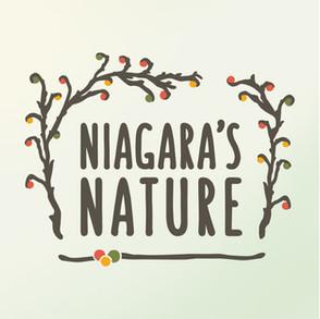 NIAGARA'S NATURE LOGO DEISGN