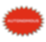 PNG LOW RES PROACTIVE BURST   AUTONOMOUS
