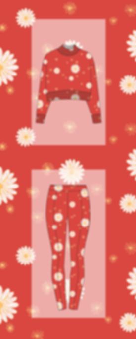 daisy rouge_Plan de travail 1.png