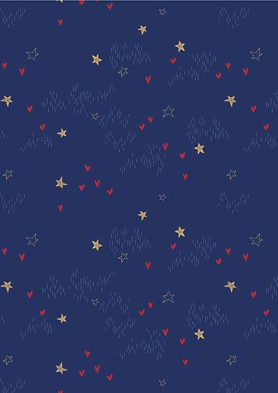 heartstars V2_Plan de travail 1.jpg