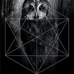 Owl%2C_Raven%2C_darkart%2C_artprint%2C_g
