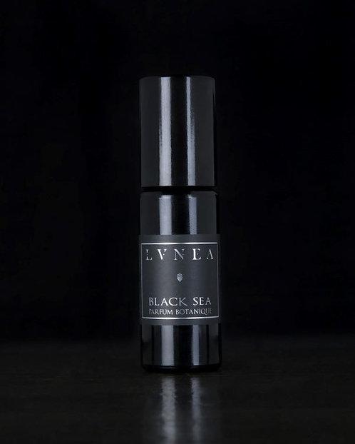 Black Sea - Perfume Oil / wood, seashells, lime, ambergris