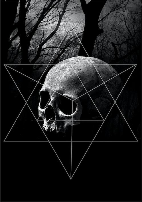 Trilogy skull postcard / Mia Selin