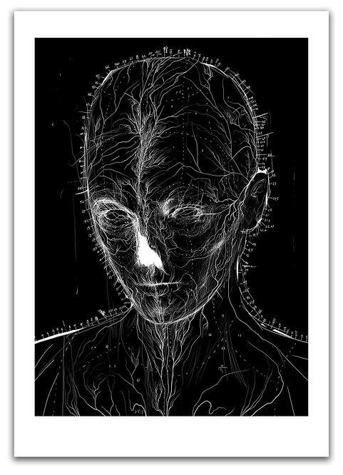 X-Ray / Anders Røkkum