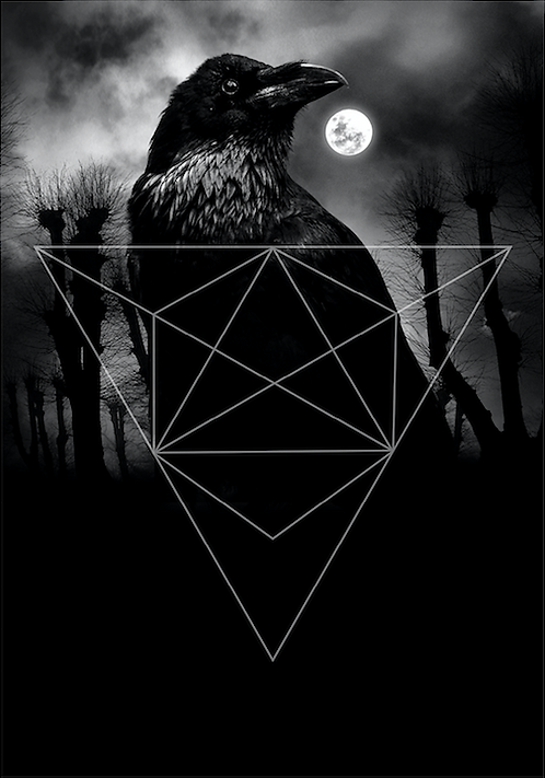 Trilogy raven postcard / Mia Selin
