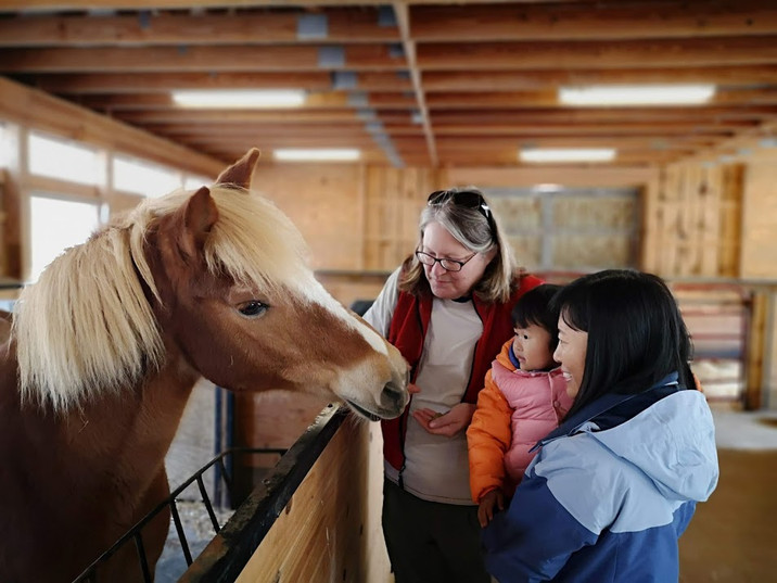 Visiting Horse Stables