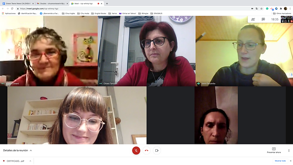 1st online meeting 2.png