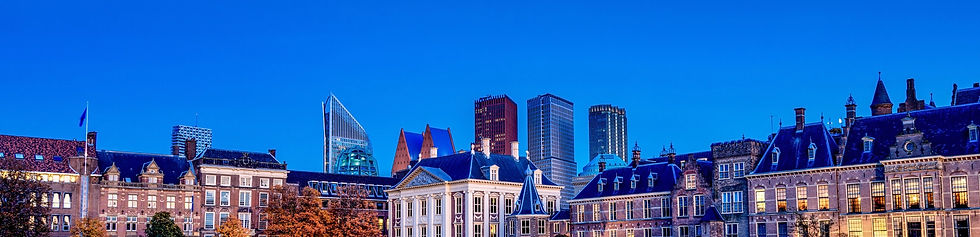 TheHague_edited_edited.jpg