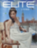 Net Hospitality Elite Travel November 2015