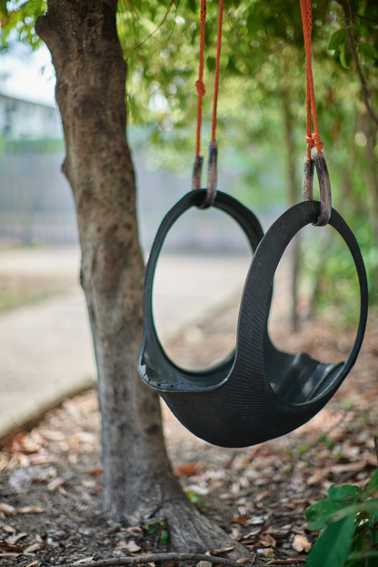 Tyre swing next to tree