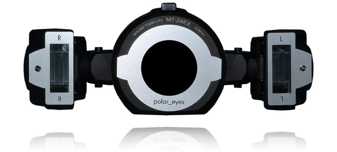 polar_eyes.003 copy.jpeg