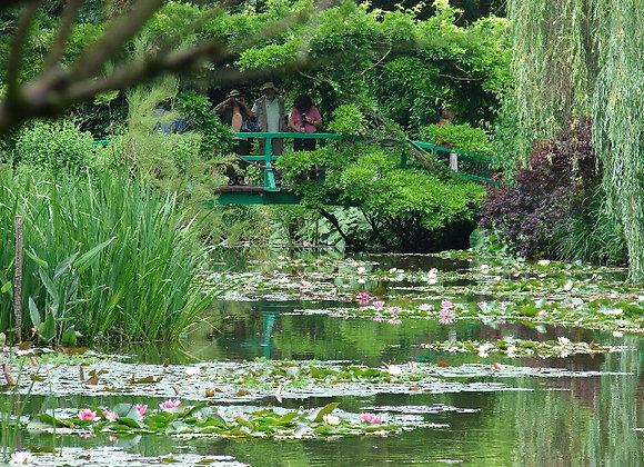 Le jardin d'eau de Monet - LIVE