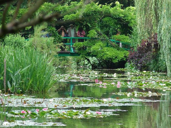 Claude Monet : visite interactive sur le Jardin d'eau de Giverny
