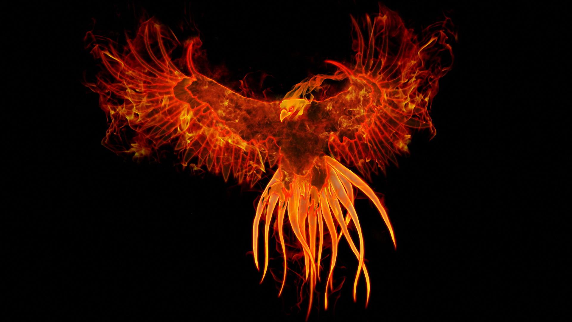 Nu Rho Sigma Phoenix