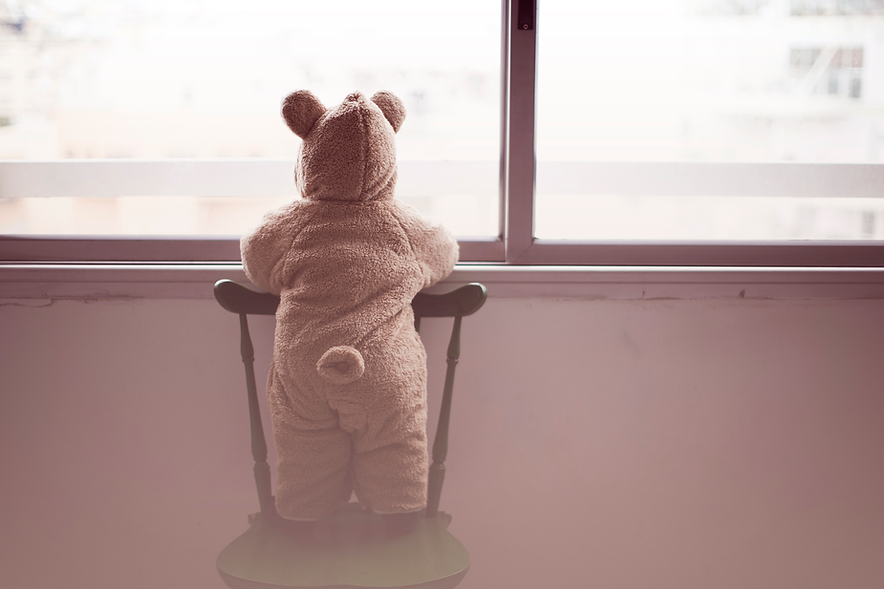Fenêtre ours en peluche