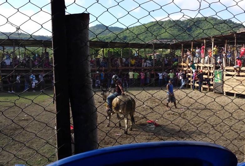 Bullfight in San Juan del Sur, Nicaragua