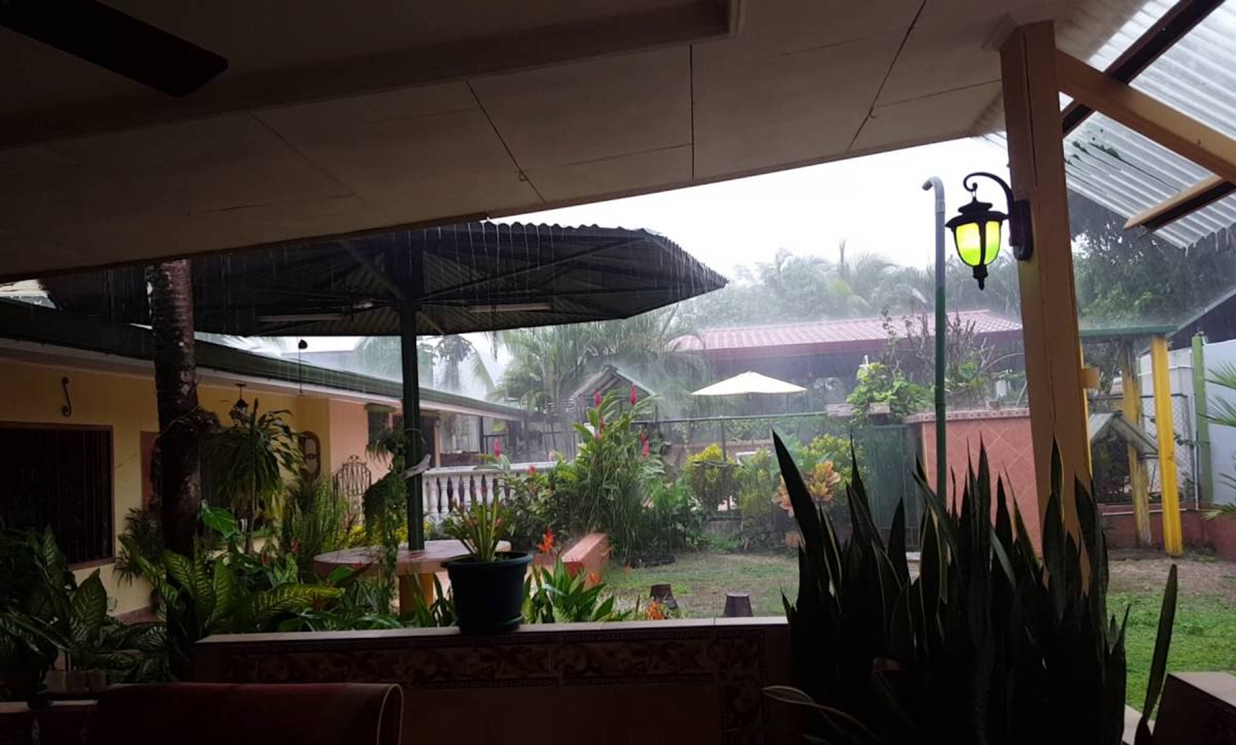 Afternoon Rains in Paso Canoas, Costa Rica