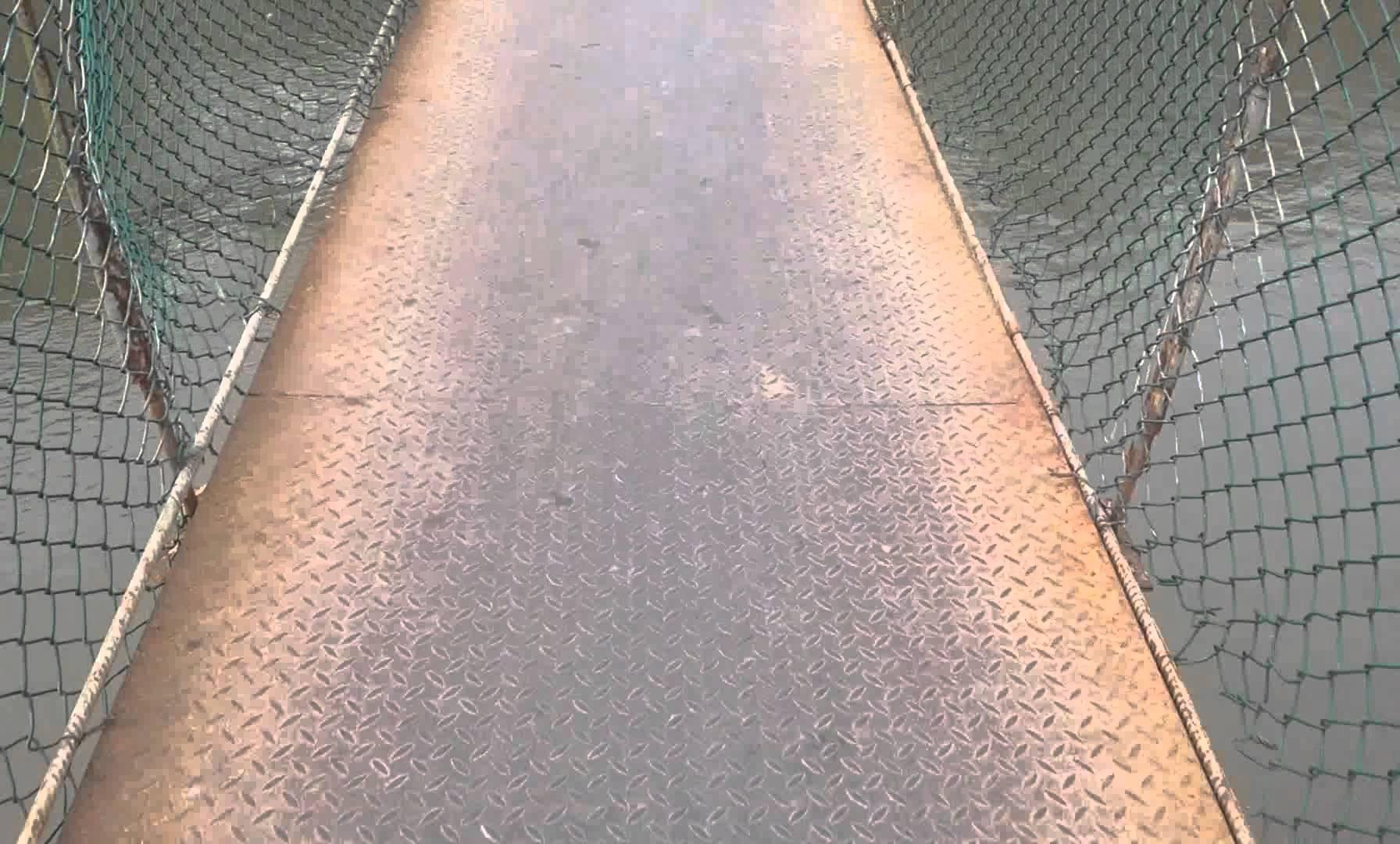 Walking the Bridge in Yaviza, Panama