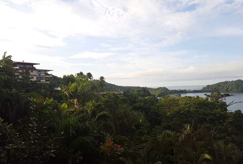 Jungle Sounds at Manuel Antonio Beach, Costa Rica