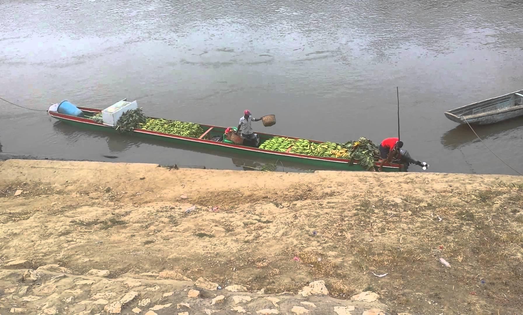 Unloading Bananas in Yaviza, Panama
