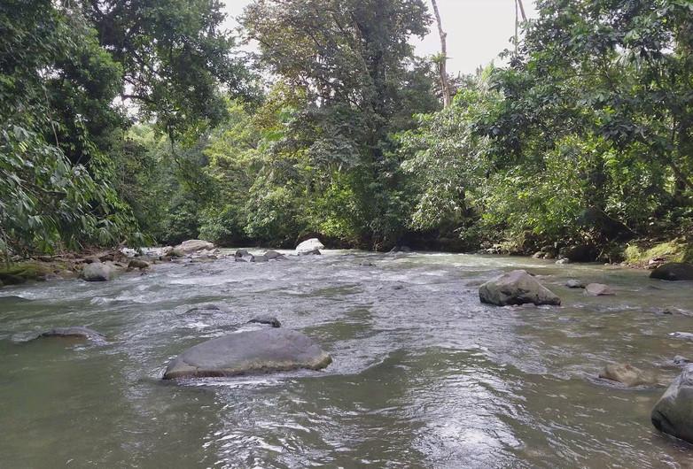 Sounds of the Rio Coloradito at Coloradito, Costa Rica