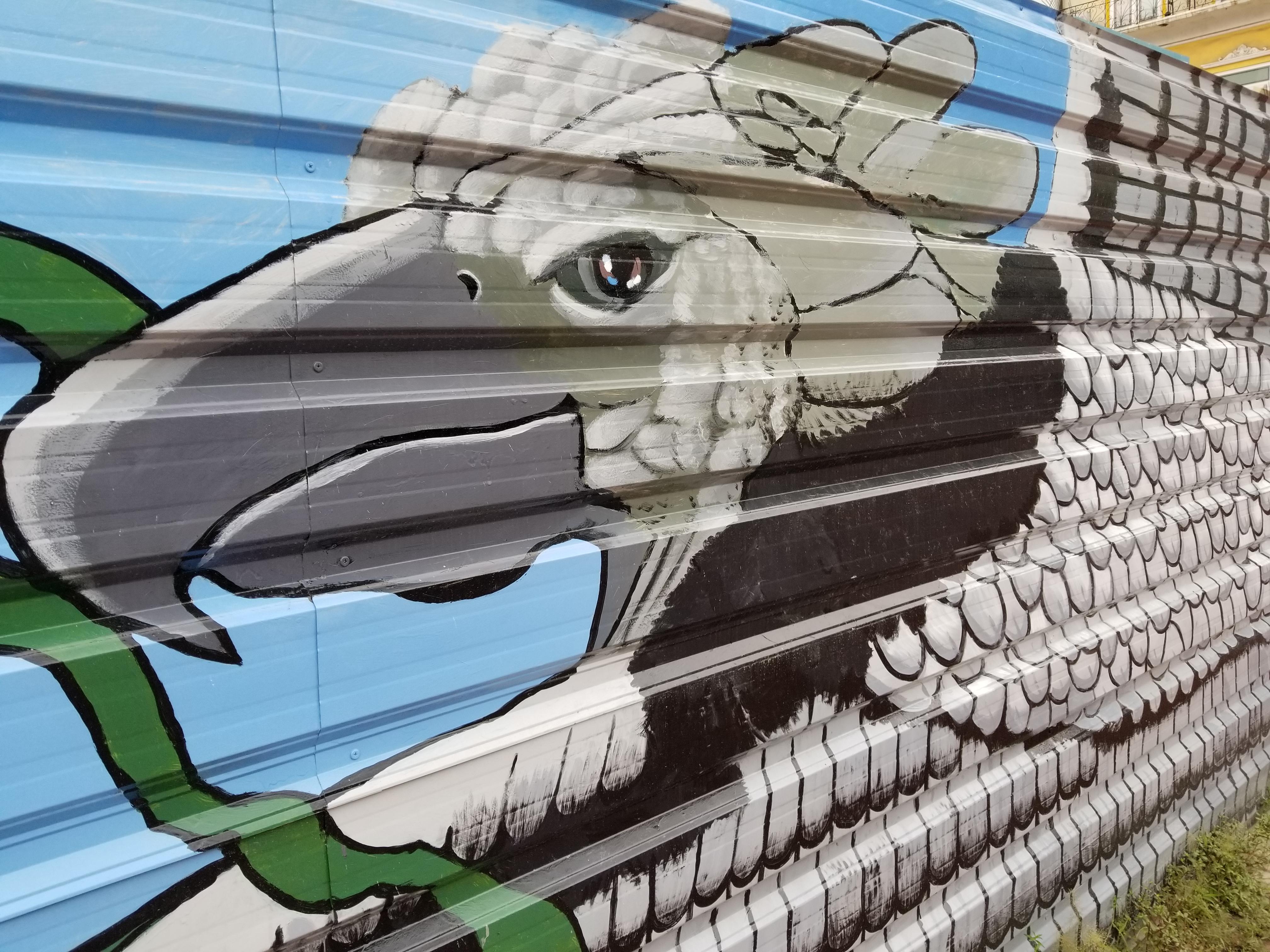 20170528_street_art_harpey_San_Felipe_Panama_City (4)