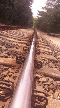 The Pan-American Railway