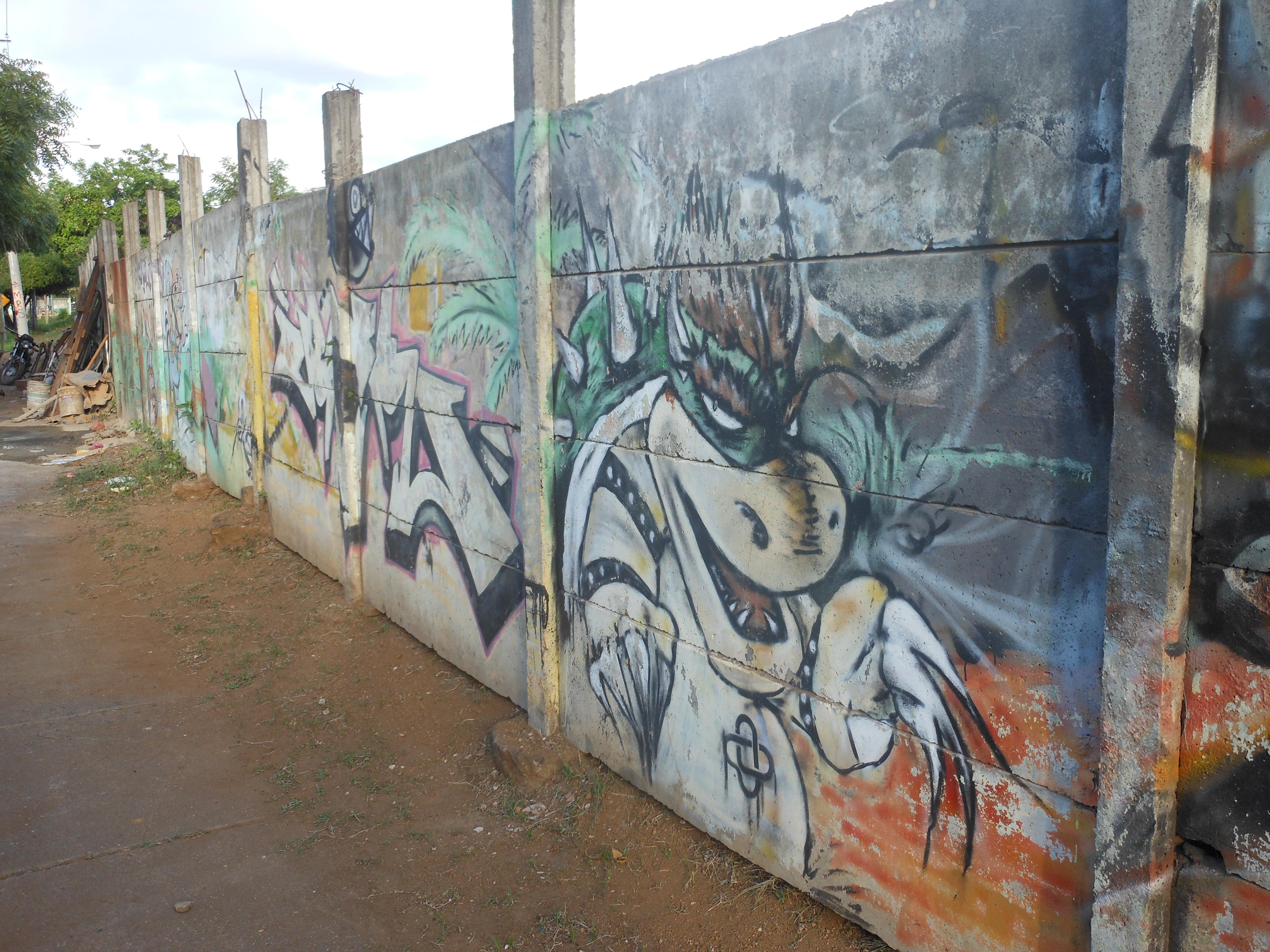 graffiti-5-managua-nicaragua_14048938702_o