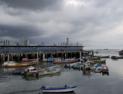 20170529_boats at the fish_market (19a).
