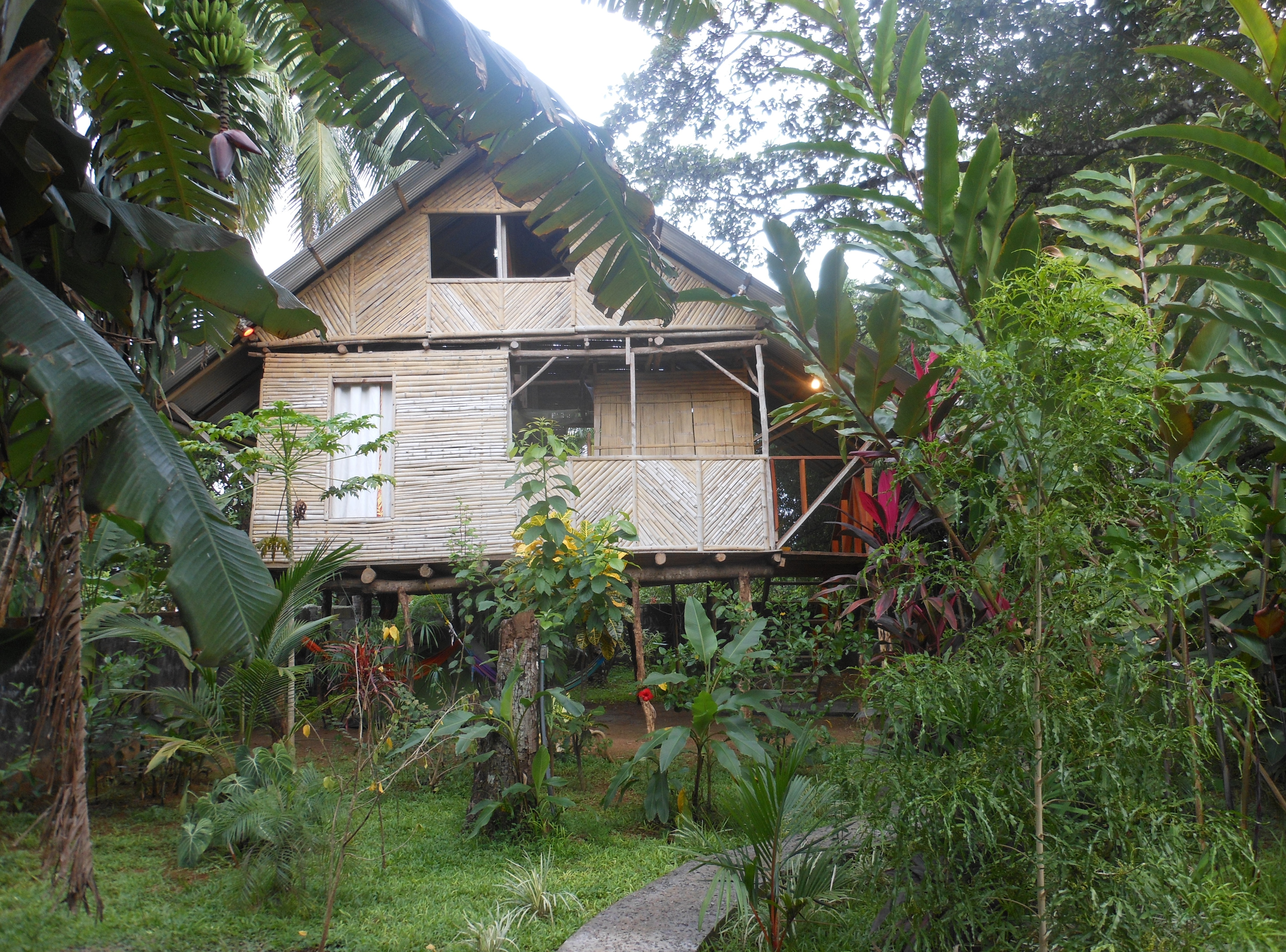 Hostel Bambu