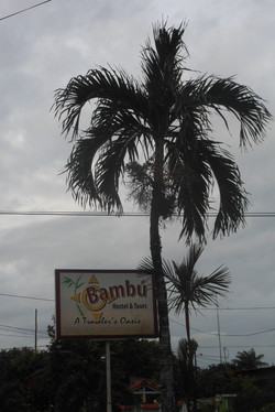 Sign for Hostel Bambu