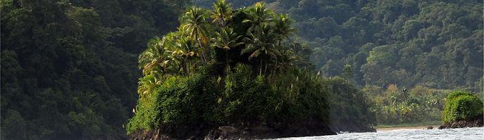 Vegetación Bahía Solano