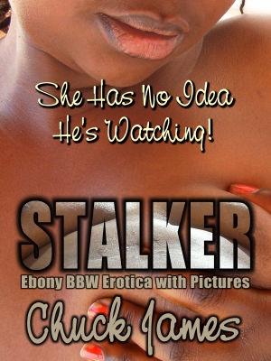 Stalker small.jpg