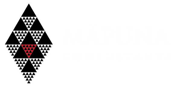 Māpuna_Consultants_Logo_Horizontal_b.p