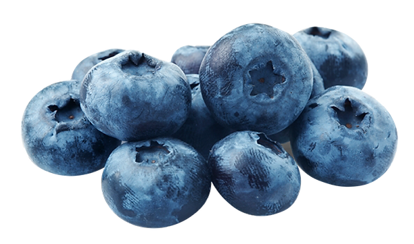 BLUEBERRY-12.png