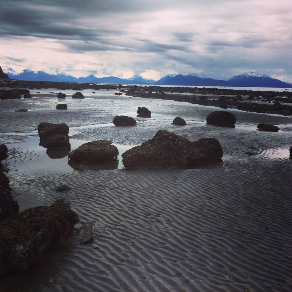 Low tide at Diamond Creek