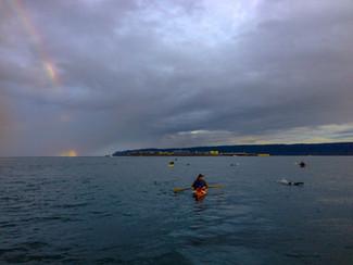 Kachemak Crossing: Open Water Swimming in Alaska