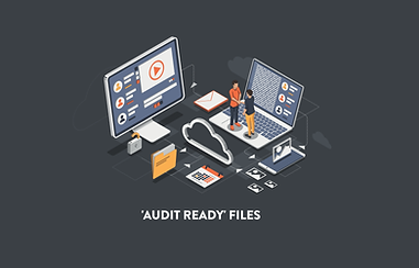 AUDIT READY FILES.png