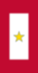 Gold_Star_Banner_wikimedida_commons.svg_