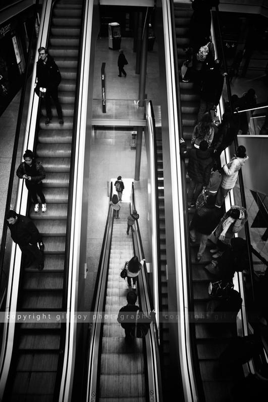 10 Copyright Gil Roy Photographe.jpg