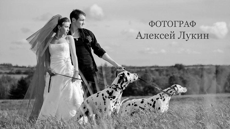 Слайд Шоу, Свадебный репортаж фото, фотограф Алексей Лукин.