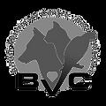 Gallary_Thumbs-BVC_logo_g.png