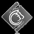 Gallary_Thumbs-RAH_logo_g.png