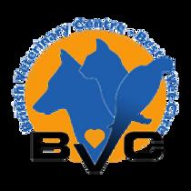 Gallary_Thumbs-BVC_logo.png