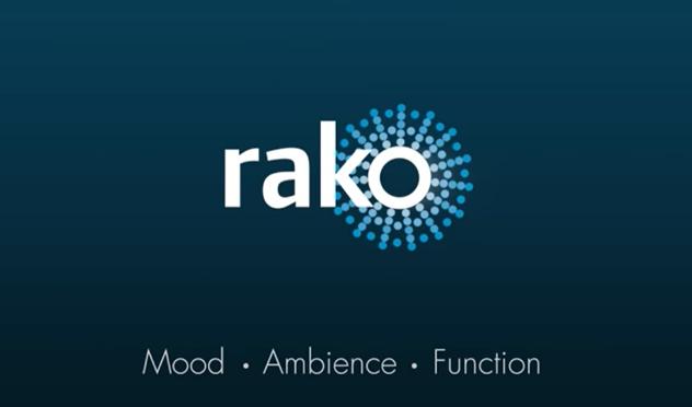 Creating a Smart Home Dream with Rako Lighting System