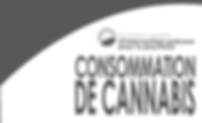 Cannabis Educational Folder - French_Pag