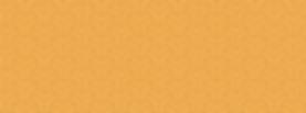 Yellow Website Border_Longer-01.png