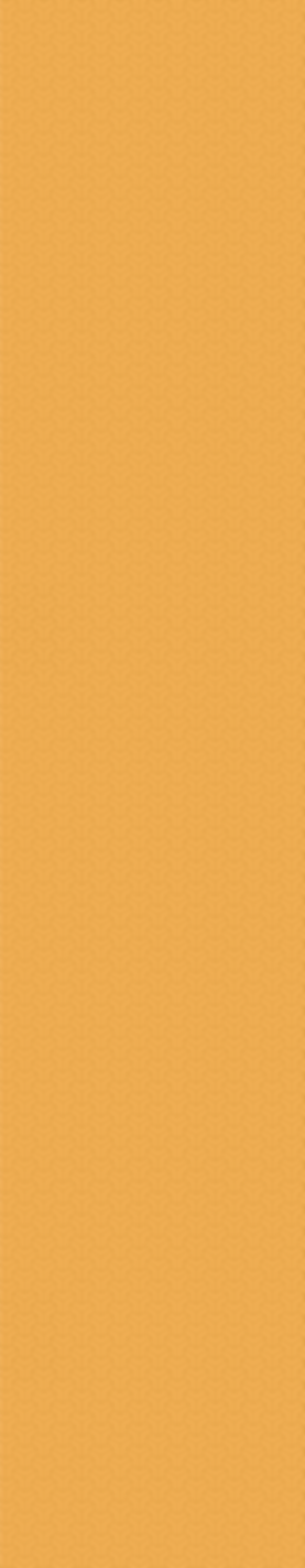 Yellow Website Border_Longer-01.png