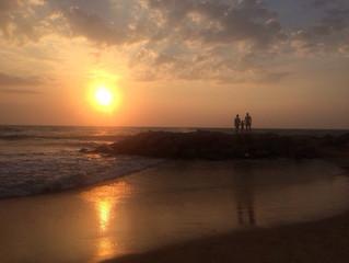 Последний день на Шри-Ланке