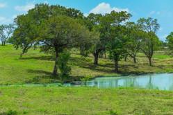 Richland Park